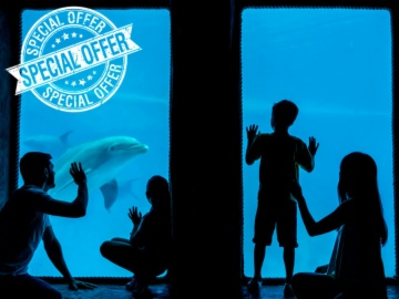 Special Offer Family Ticket 4